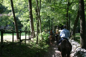 Equitazione - Riding - Reiten