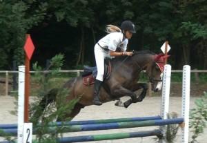 equitazione varese sport commission